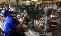 Du bois vietnamien dans 120 pays et territoires