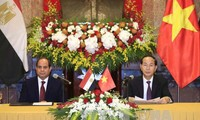 Entretien Trần Đại Quang - Abdel Fattah al Sisi