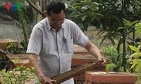 Hô Van Sâm,  un apiculteur passionné à Son La