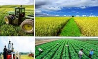 Agriculture : restructurer pour un développement durable