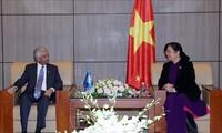 Un coordinateur résident de l'ONU au Vietnam reçu par Tong Thi Phong