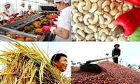Vietnam : vers une exportation durable de produits agricoles