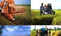 Forum sur le développement durable et la résilience au changement climatique du delta du Mékong