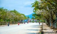 La province de Diên Biên est prête pour la fête des fleurs de bauhinie