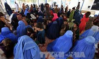 Migrant crisis: Over 350,000 Afghan refugees return home