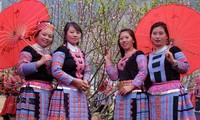 ソンラ省、初めて、桃の花祭りを開催