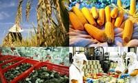 年初以来の農林水産物の輸出
