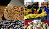 トレーディングフロアで農産物を取引