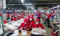 上半期の繊維製品の輸出額が急増