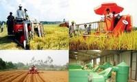 農業・農民・農村に関する決議実施の農村の変貌