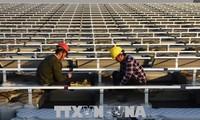 中国、太陽光発電製品へのセーフガードでアメリカをWTO提訴