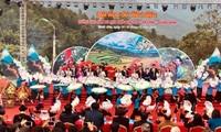 クアンニン省でツバキ祭り