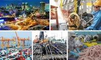 ベトナムの急速で、持続的経済発展政策