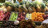 ベトナム農産物を厳しい市場への出荷を推進