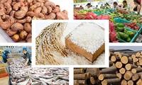農産物の生産と消費を両立させる