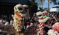 越南驻各国使馆举行招待会,与旅外越侨共迎新春