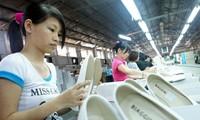 越南皮鞋业加强国产化,实现可持续发展