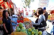 越南蔬菜瓜果再次获得对欧出口证书