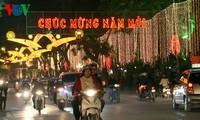 越南各地和海外越南人纷纷举行迎新活动