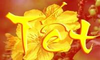 越南语教学:越南人春节常用的一些新年祝福语