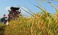 推介九龙江平原大米、水产品和水果