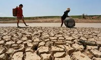 越南呼吁世界卫生组织提高应对气候变化活动的效果