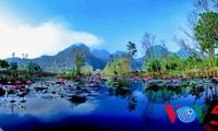 阿根廷媒体赞扬越南旅游魅力