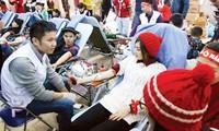 第7次红色星期日献血节在河内举行