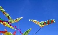 2015年国际风筝节将在巴地头顿省举行