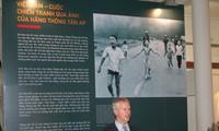 美联社图片中的越南战争