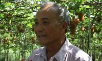 宁顺省三梅葡萄的生产加工模式