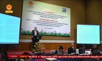 越南国会在监督实施国际条约中的作用