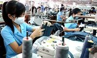 加入TPP为越南经济带来发展的机会