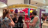 越南参加南美共同市场手工艺品博览会
