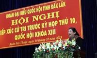 越南国会副主席丛氏放接触多乐省选民