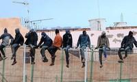 巴尔干国家对欧盟解决移民问题的计划表示质疑