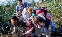 土耳其就解决移民危机提出倡议