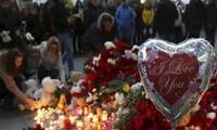 俄客机在埃及坠毁事件:现场调查工作结束