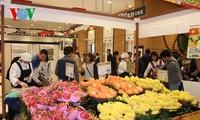 越南芒果正式打入日本市场