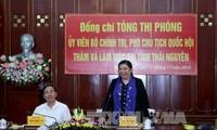 越南国会副主席丛氏放视察太原省