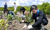 欧盟协助越南应对气候变化