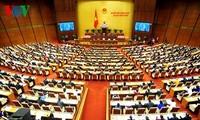 越南国会讨论和通过一些法律草案
