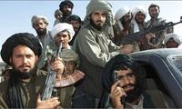 阿富汗消灭数十名塔立班武装人员