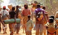 越南呼吁对话与和解保障布隆迪的安全与人权