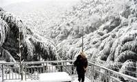 中国多地受创纪录的寒冷天气影响