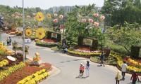 同奈省镇边花街喜迎新春