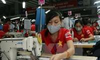 TPP有助于越南推动纺织品服装出口