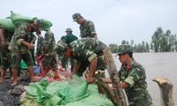 越南提高全社会对防灾抗灾的认识