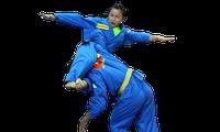 第一次越南传统武术国际锦标赛即将举行