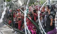 波罗的海国家开始在边境沿线建防护栏  应对移民问题